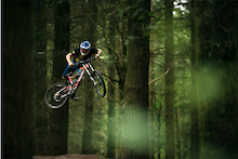 Bell Ride Free: Forest of Dean