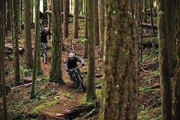Forest of Progression: Old Growth Culture Meets New Age Riding - Video