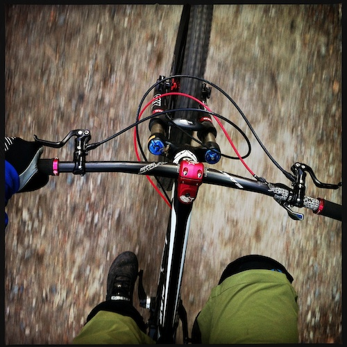 Selkirk College Mountain Bike Trails Trailforks