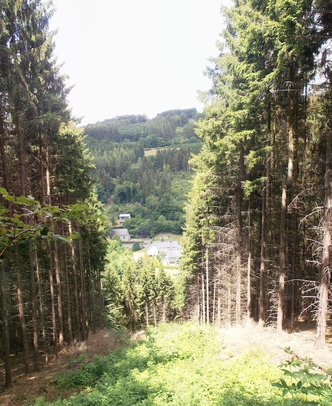 Singles monschau Singles und Kontaktanzeigen aus Monschau. Dating und Partnersuche in Monschau
