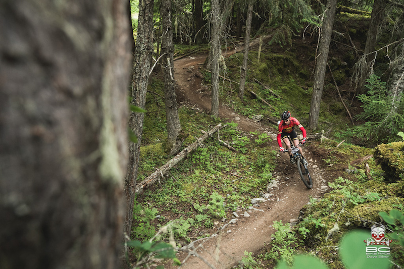 Sweet buffed trails for days - this is mtb heaven.