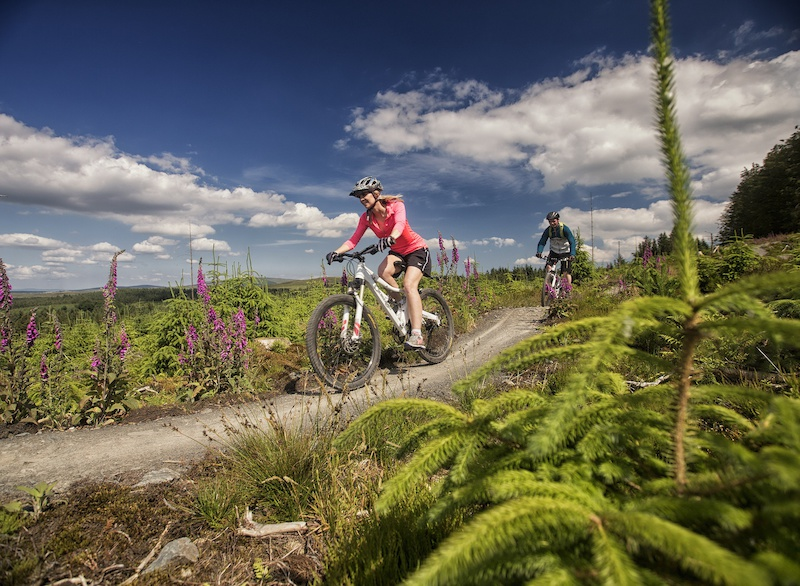 XC riding on the Davagh Forest Trails powered by Chain Reaction Cycles