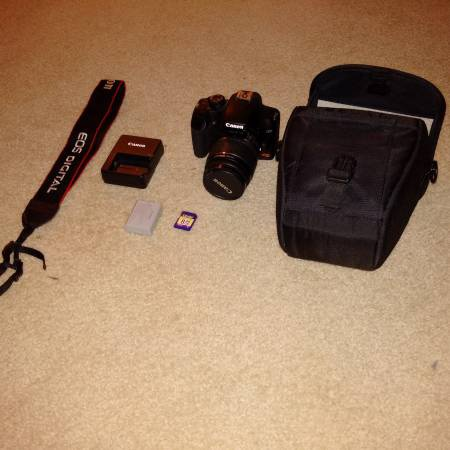 how to use ds126191 canon camera