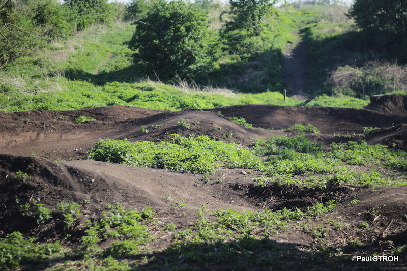 Part of the Selzi Trail s pump track