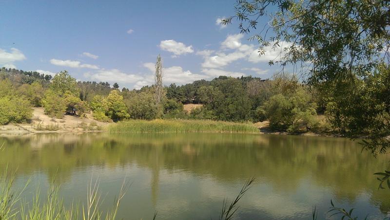دریاچه پارک یاس