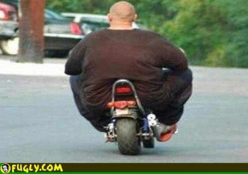 Fat Man On Bicycle 55