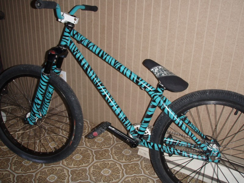 Bmx Zebra Paint Job