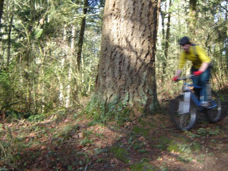 Douglas fir trail mountain bike trail portland oregon for Portland maine bike trails