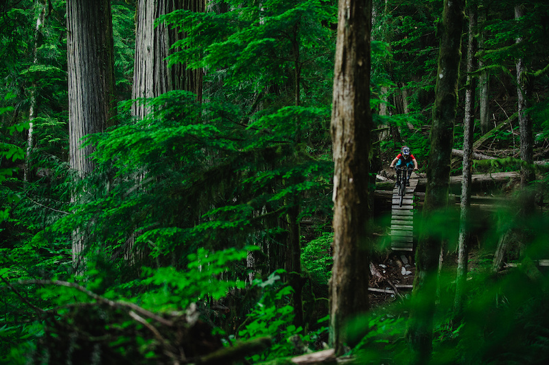 I spent a few weeks this summer touring around Lillooet Retallack and Squamish with Kevin Landry. After a few dusty and dry weeks out east coming to Squamish was a much needed refreshment of tacky trails and green colors. Grin and Holler is an amazing trail with big features but this section called out to me with the big old growth cedars moss ferns and the old lader spaced between it all.