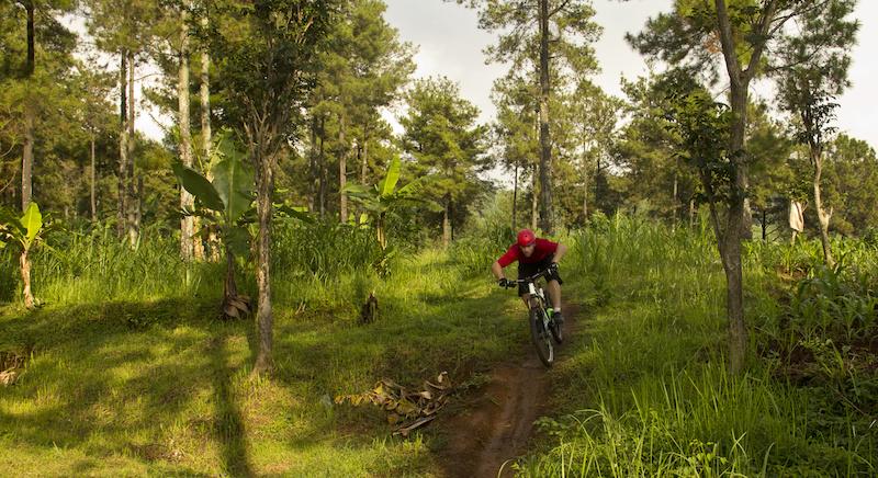 dh trail