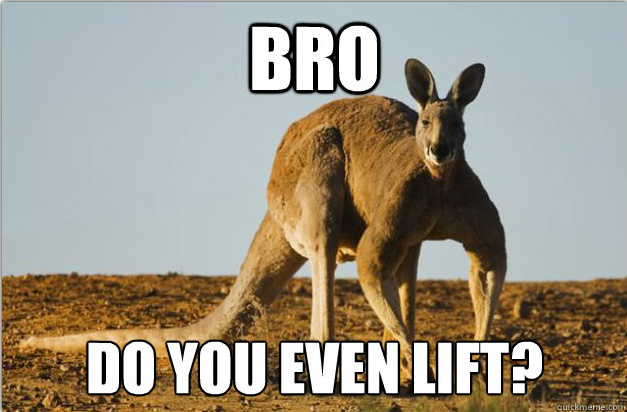 Do you even lift kangaroo - photo#21