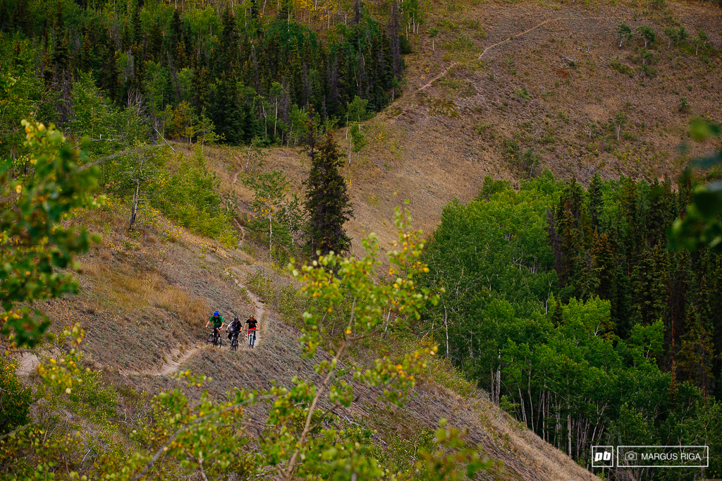 The Yukon River trail. One of the coolest.