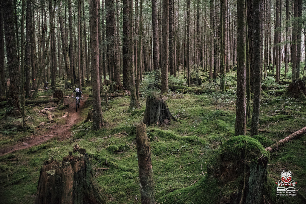 powell river single men Bc bike race 2015: day 2 powell river jun 30,  and single track than the day before, powell river delivered a mountain bike celebration on the shores  men's .