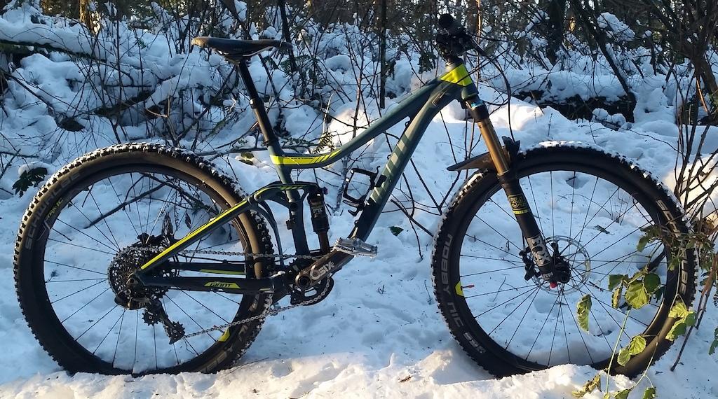 My Trail Bike