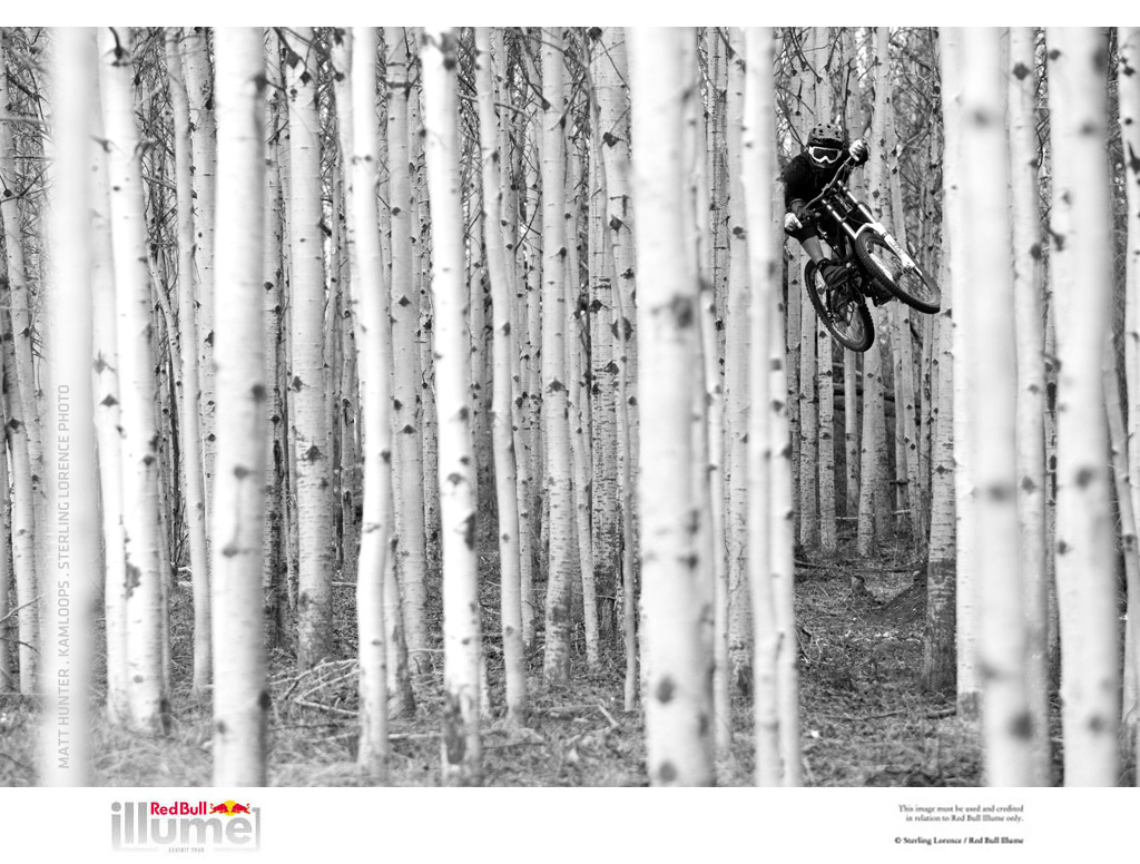 People s Choice Overall Winner Redbull Illume.