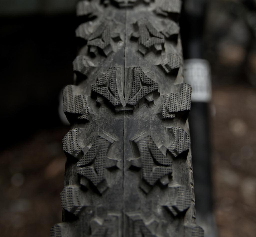 Tioga tire