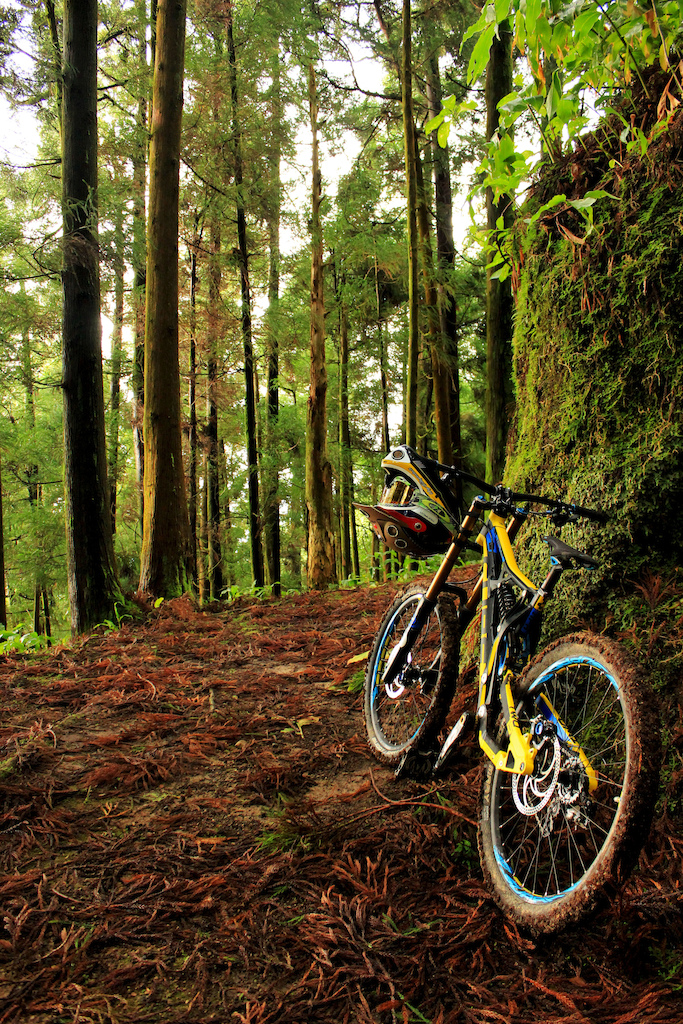 freeriding in the Azores islands  http://sacredrides.com/rides/azores/paradise-island