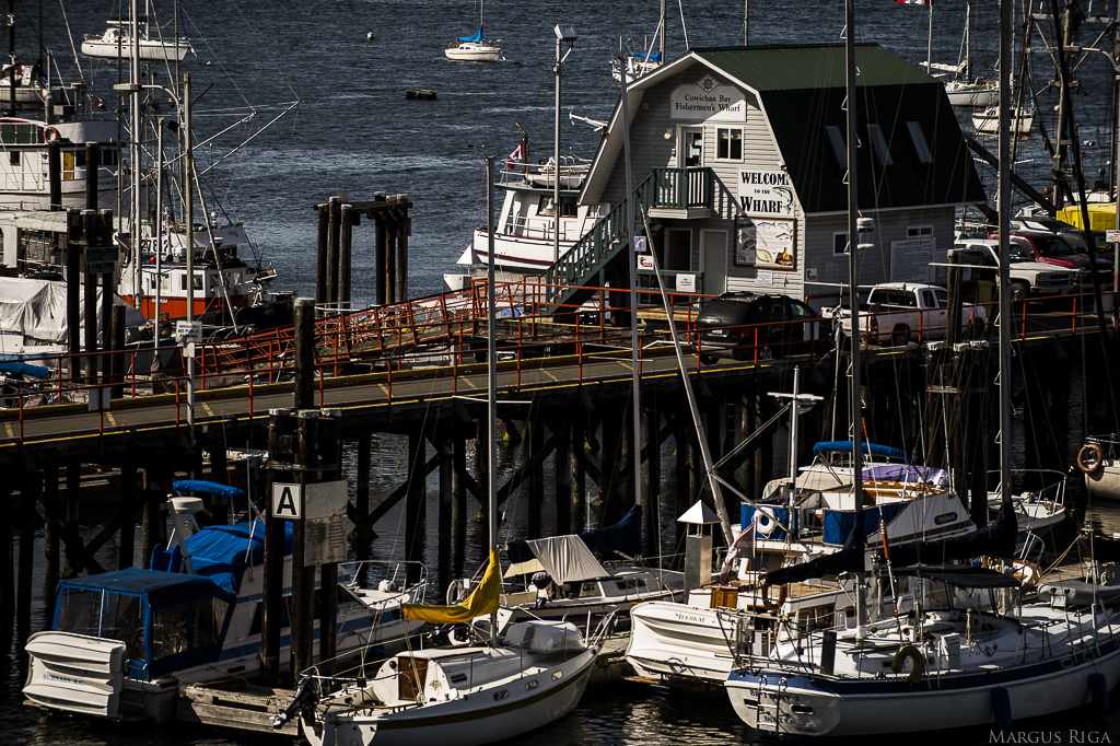 Cowichan Bay wharf.
