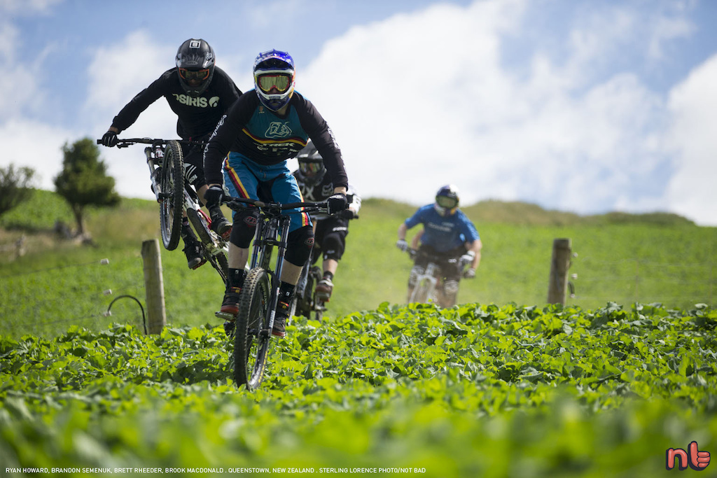 These guys prefer their rutabaga... shredded. notbad Sterling Lorence Photo