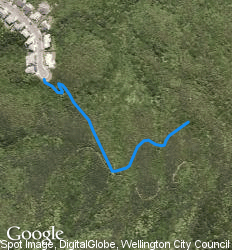 Landsdowne mountain bike trail wrights hill wellington for 136 the terrace wellington