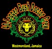 40 Legger Bush Doctor Crew-Jamaica logo