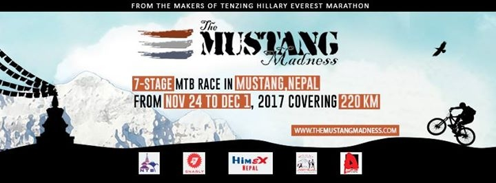The Mustang Madness