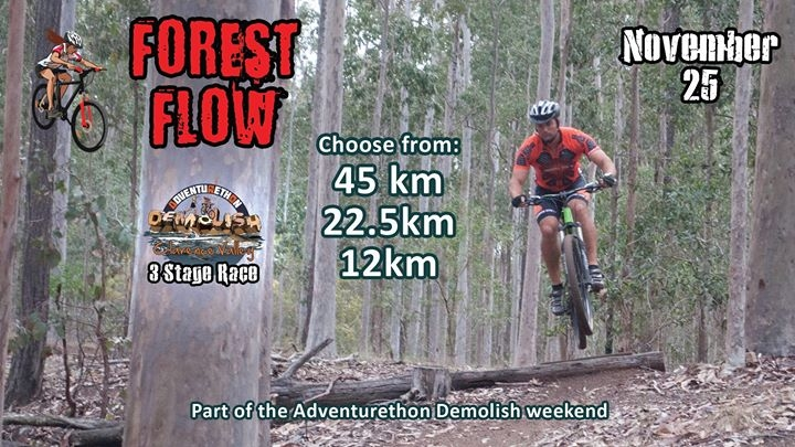Forest Flow - Mountain Bike Event