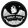 Surly Pika Adventure Race
