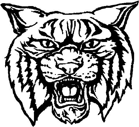 Wildcat Enduro