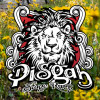 Pisgah Mountain Bike Stage Race