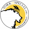 York 38 Special