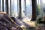 @JunkeeThrottler between the trees of the lower jump section at Rogate DH on a day of perfect natural light