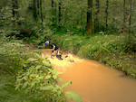 Jazda w deszczowe Wakacje xD Mialo byc nad rzeka no ale rozped i wybicie nie pozwalalo :D  Photo by: Kaczorro