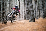 Darcy ripping up Bennets forest! first time shooting with Ektar 100, its sick!