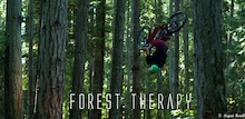 Video: Forest Therapy - Isayah Chelini Dheensaw