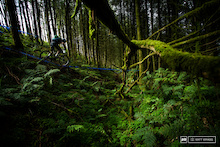 Photo Epic: Enduro in the Emerald Isle