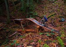 Cowichan Valley, Southern Vancouver Island - Opening New Trails