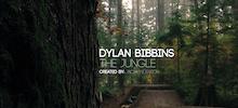 Video: Jungle Winters