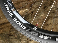 First Look: WTB Trail Boss Tire