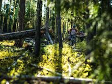 2014 NIMBY Fifty Marathon XC Race - Pemberton, BC