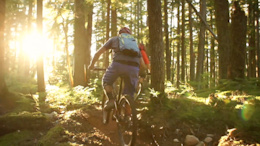 Video: Focus Trail Team Loves Whistler
