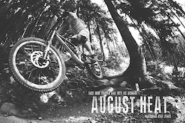 Video: TLD - August Heat