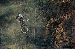 Skyride: Season of the Bird images