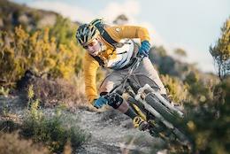 Ibis Cycles Sign Tobias Woggon