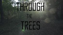 Video: Through the Trees