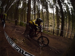 Forest of Dean Mini DH 3