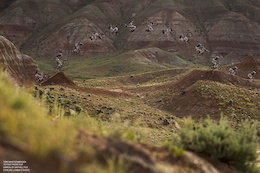 Want to be in a Mountain Bike Movie?