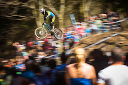 Bergamont Hayes Components Team at Lourdes DH World-Cup