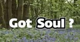 Video: Do Hardtails Have Soul?