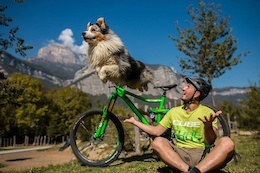 Dog vs Mountainbike Tricks - Video